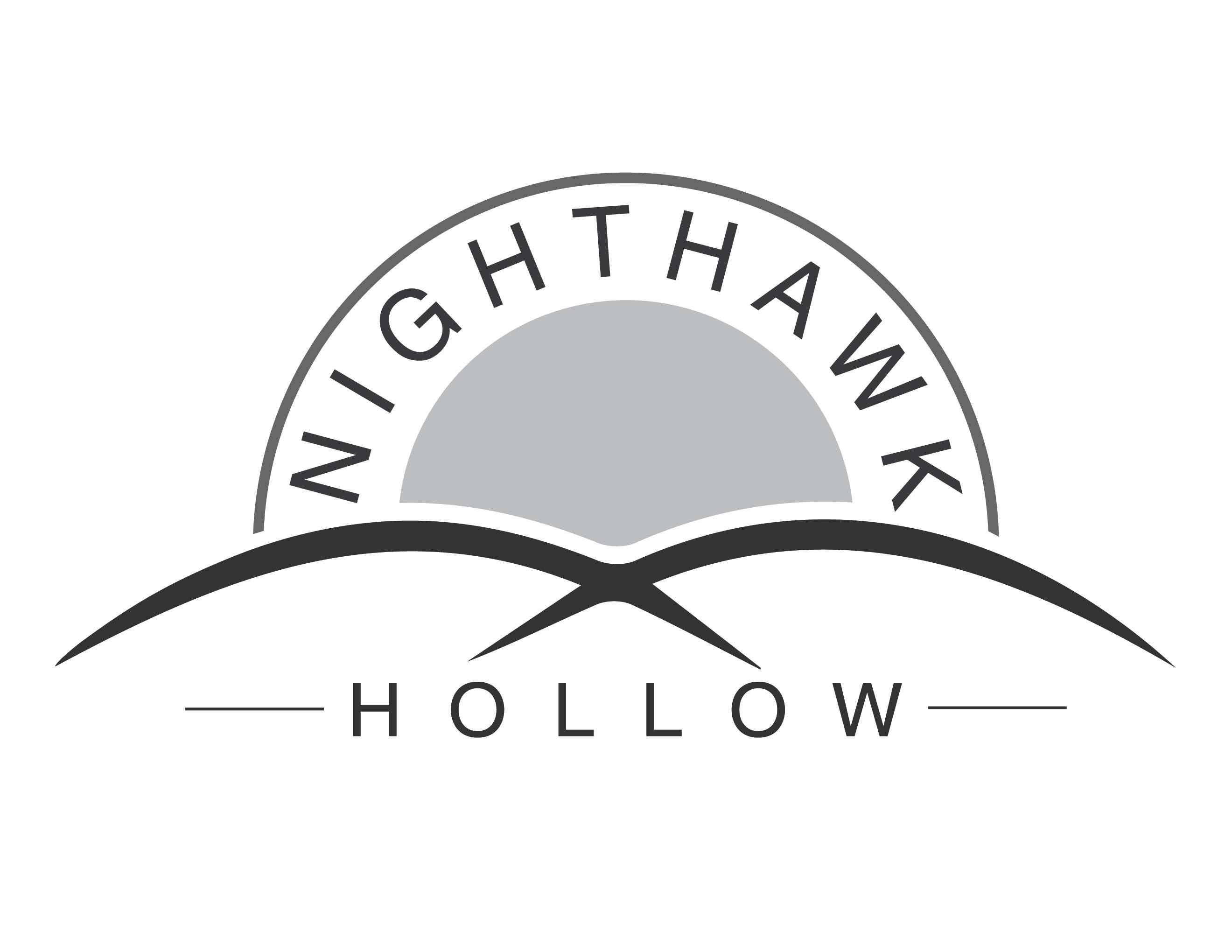 nighthawk__hollow_Logo